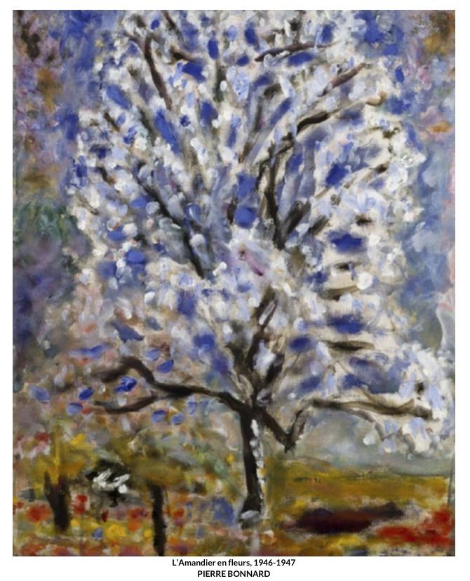 L'Amandier en fleurs – Pierre Bonnard